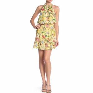 Parker Serenity Floral Sleeveless Dress